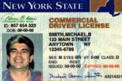 Commercial Driver's License Image